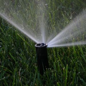 Lawn Water Sprinkler spraying water