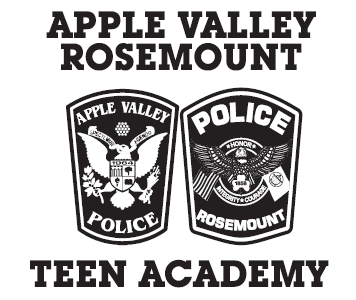 Logo - AV and Rosemount